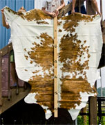 Brindle Spotted Texas Longhorn Hide Rug U_3192_s