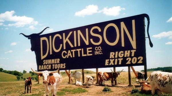 Dickinson Cattle Co Billboard